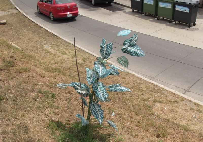Planta artificial en lugar de árbol real