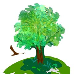 Viveros Forestales de San Pablo Apetatitlán