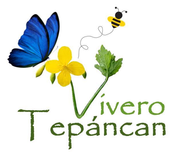 Tepancan
