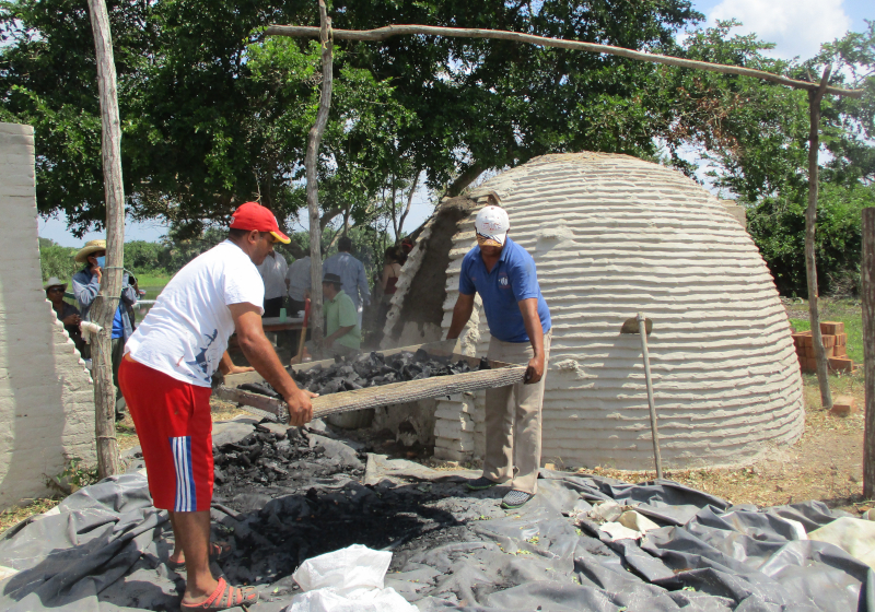 Producción de carbón de manglar